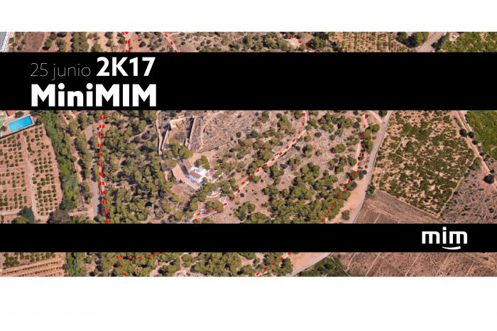 miniMiM 8ª edición